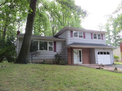 Edison Twp. Single Family Home For Sale: 6 Belvidere Ave