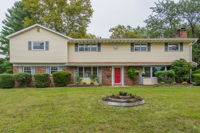 South Brunswick Twp. Single Family Home For Sale: 78 Sand Hills Rd