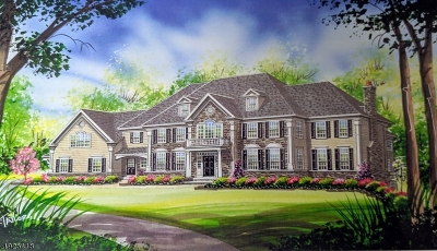 Edison Twp. Single Family Home For Sale: 731 New Dover Rd