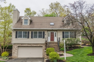Boonton Twp. Single Family Home For Sale: 18 Berton Rd