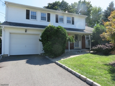 Edison Twp. Single Family Home For Sale: 9 Augusta Ave