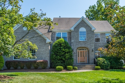 Boonton Town Single Family Home For Sale: 14 Country Meadow Ln