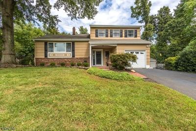Bridgewater Twp. Single Family Home For Sale: 73 Shady Lane