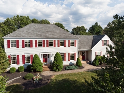 Montgomery Twp. Single Family Home For Sale: 174 Wilshire Dr