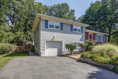 Florham Park Boro Single Family Home For Sale: 2 Kenneth Ct