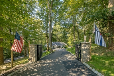 Somerset County Single Family Home For Sale: 110 Post Kunhardt Rd