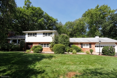 Denville Twp. Single Family Home For Sale: 68 Clearmont Ave