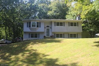 Byram Twp. Single Family Home For Sale: 54 Sleepy Hollow Rd