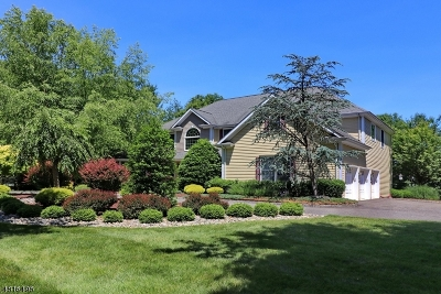 Montville Twp. Single Family Home For Sale: 36 Church Ln (M)