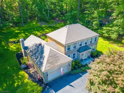 Denville Twp. Single Family Home For Sale: 40 Benedict Cres
