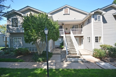 Bedminster Twp. Condo/Townhouse For Sale: 7 Pine Ct