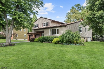 East Brunswick Twp. Single Family Home For Sale: 16 Appletree Ln
