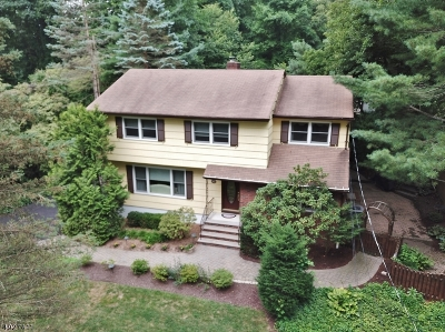 Parsippany-Troy Hills Twp. Single Family Home For Sale: 38 Woodcrest Rd