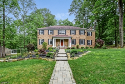 Randolph Twp. Single Family Home For Sale: 12 Rock Ledge Rd