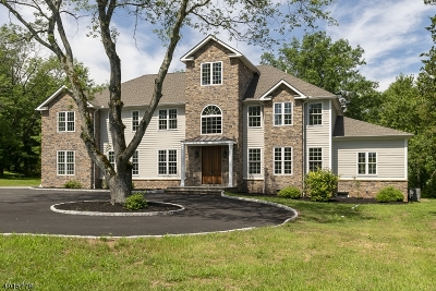 Montgomery Twp. Single Family Home For Sale: 258 Opossum Rd