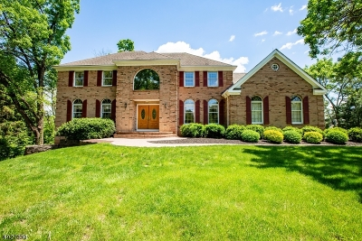 Montgomery Twp. Single Family Home For Sale: 33 Lynchburg Ct