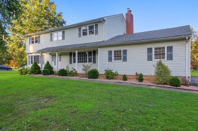 Bridgewater Twp. Single Family Home For Sale: 17 Thruway Dr