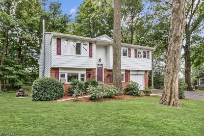 Byram Twp. Single Family Home For Sale: 12 Pierson Dr