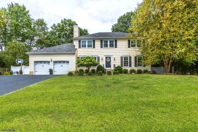 Bridgewater Twp. Single Family Home For Sale: 36 Flanders Way