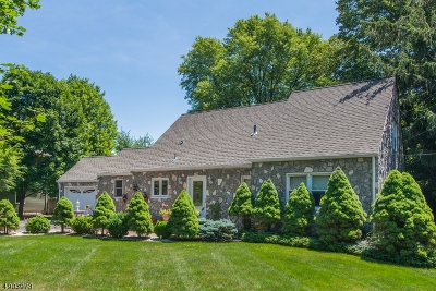 Boonton Twp. Single Family Home For Sale: 4 Terrace Road