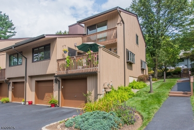 Boonton Town Condo/Townhouse For Sale: 189 N Main St