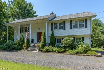 Hillsborough Twp. Single Family Home For Sale: 4 Spring Valley Dr