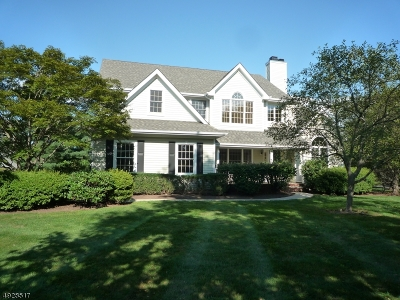 Montgomery Twp. Single Family Home For Sale: 1 Spyglass Rd