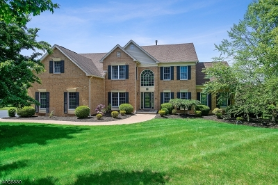 Montgomery Twp. Single Family Home For Sale: 40 Updikes Mill Rd