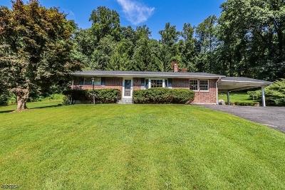 Warren County Single Family Home For Sale: 537 Harm Brass Castle