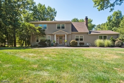 Branchburg Twp. Single Family Home For Sale: 3405 Round Hill Road