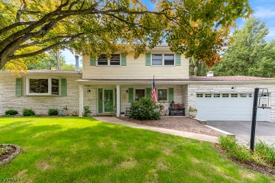 Parsippany-Troy Hills Twp. Single Family Home For Sale: 22 Trojan Ave