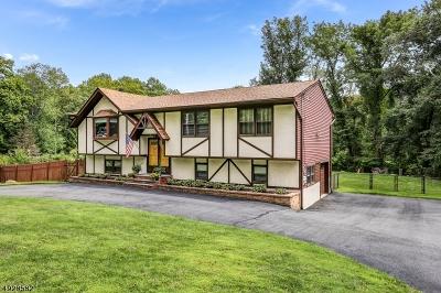 Roxbury Twp. Single Family Home For Sale: 163 Emmans Rd