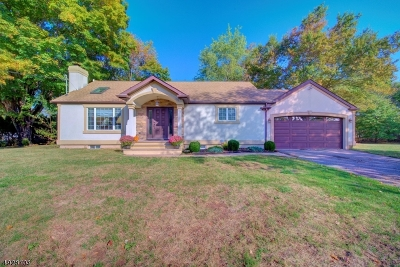 Hillsborough Twp. Single Family Home For Sale: 637 Amwell Rd