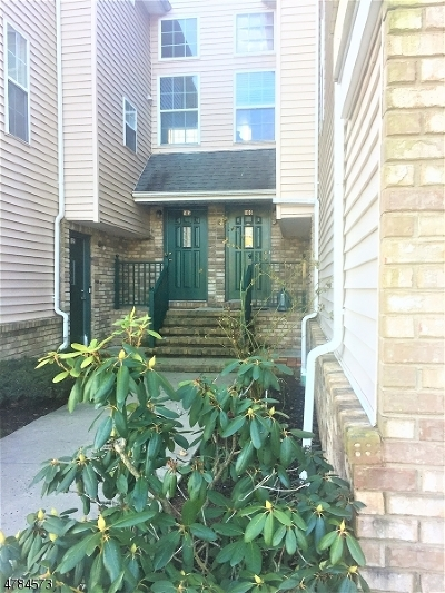 Montgomery Twp. Condo/Townhouse For Sale: 106 Rip Van Dam Ct