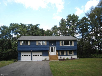 Warren County Single Family Home For Sale: 2 Centerville Rd