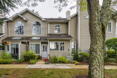 Bedminster Twp. Condo/Townhouse For Sale: 18 Birchwood Rd