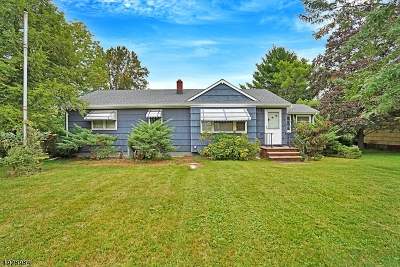 Bridgewater Twp. Single Family Home For Sale: 461 Nj 28