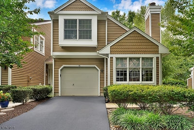 Bedminster Twp. Condo/Townhouse For Sale: 46 Stone Run Rd