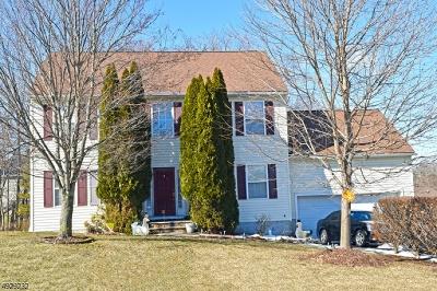 Newton Town Single Family Home For Sale: 7 Stratford Ln