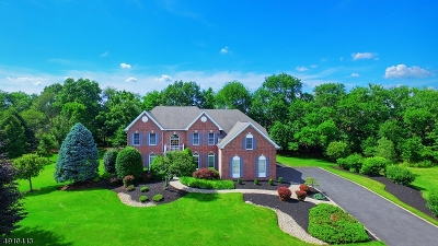 Montgomery Twp. Single Family Home For Sale: 49 Southfield Dr