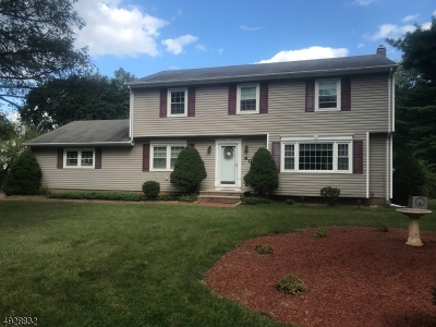 Bridgewater Twp. Single Family Home For Sale: 400 Stony Brook Dr
