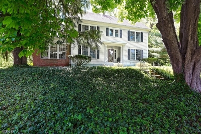 Warren County Single Family Home For Sale: 38 Edison Rd
