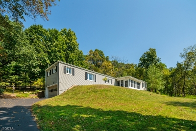 Bridgewater Twp. Single Family Home For Sale: 744 Old Forge Rd