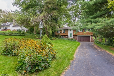 Sparta Twp. Single Family Home For Sale: 26 Sharon Dr