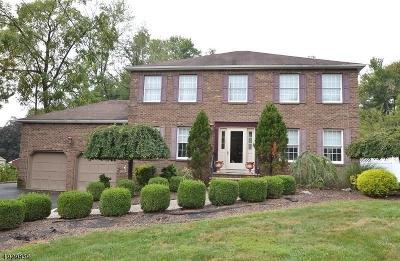 East Hanover Twp. NJ Single Family Home For Sale: $669,900