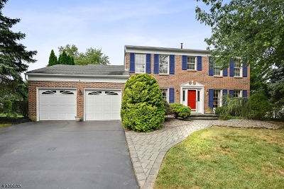 South Brunswick Twp. Single Family Home For Sale: 4 Drexel Hill Dr