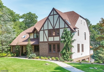 Montville Twp. Single Family Home For Sale: 28 Cheyenne Dr