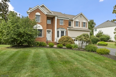 Montgomery Twp. Single Family Home For Sale: 105 Ketcham Rd