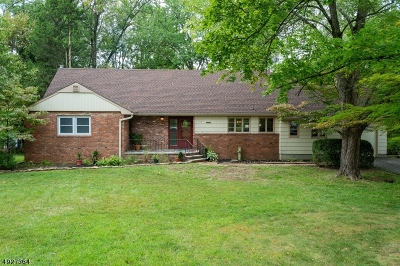 Bridgewater Twp. Single Family Home For Sale: 1666 Valley View Rd