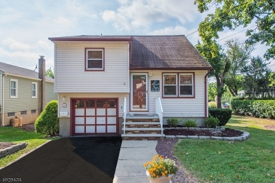 Parsippany-Troy Hills Twp. Single Family Home For Sale: 44 Halsey Rd